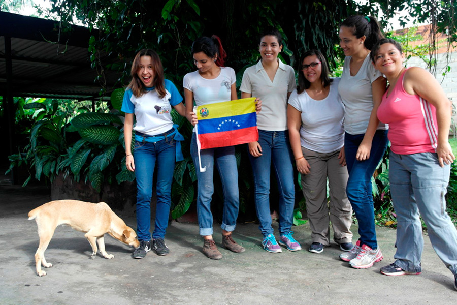 Helping Abandoned Pets in Venezuela