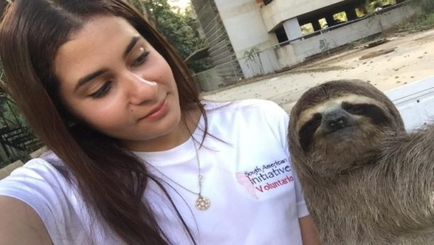 a woman helps endangered Venezuelan animals